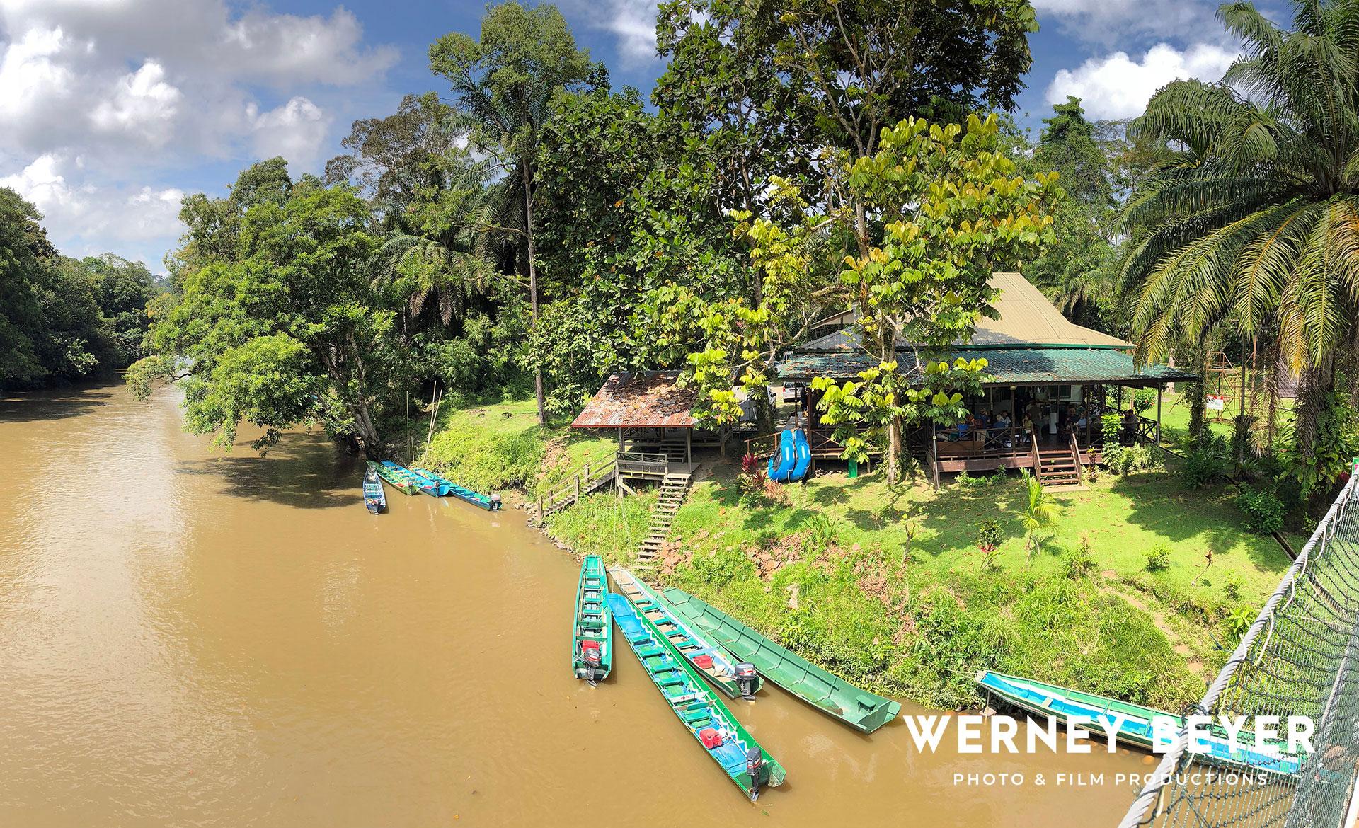 Jungle Boatride, Muara River, Brunei